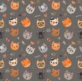 Configuration sans joint avec les chats mignons Photographie stock