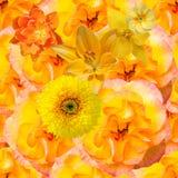 Configuration sans joint avec les fleurs oranges Photo stock