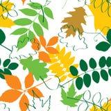 Configuration sans joint d'automne illustration stock