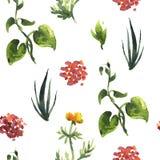 Configuration sans joint de centrales Illustration décorative florale illustration stock