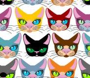 Configuration sans joint de chats Beaucoup de différents animaux familiers Fond de vecteur de illustration de vecteur