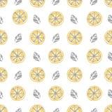 Configuration sans joint de citron Aspiration de main de modèle de fruit Image libre de droits