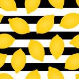 Configuration sans joint de citron Illustration de vecteur Photographie stock