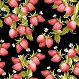 Configuration sans joint de fraise Illustration d'aquarelle d'aspiration de main Photo libre de droits