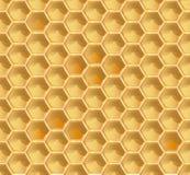 Configuration sans joint de nid d'abeilles Photographie stock libre de droits
