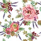 Configuration sans joint de pivoine illustration de rose de rose d'aquarelle Image libre de droits