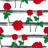 Configuration sans joint de roses Image libre de droits