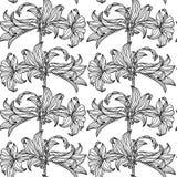 Configuration sans joint de vecteur avec des fleurs Fourrure dalmatienne Image libre de droits
