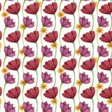Configuration sans joint Fleurs pavot et marguerite illustration stock