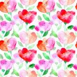 Configuration sans joint florale avec des fleurs de pavot illustration de vecteur
