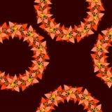 Configuration sans joint florale décorative Photographie stock libre de droits