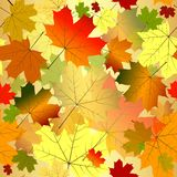 Configuration sans joint florale d'automne Photo stock