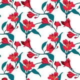 Configuration sans joint florale de vecteur Le rouge fleurit l'alstromeria Drapeau de cru illustration stock