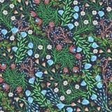 Configuration sans joint florale Fleurs créatives tirées par la main Fond artistique coloré avec la fleur Herbe abstraite Image stock