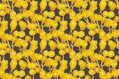 Configuration sans joint florale Fleurs créatives tirées par la main Fond artistique Herbe abstraite Taches de peinture photo stock