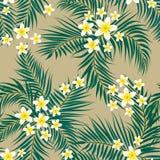 Configuration sans joint florale Fond avec la main colorée d'isolement Image libre de droits