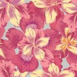 Configuration sans joint florale Fond de fleur Épanouissez-vous l'orphie de nature illustration de vecteur