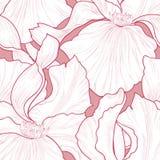 Configuration sans joint florale Fond gravure à l'eau-forte d'iris de fleur Abstrac Images libres de droits