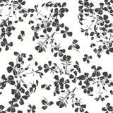 Configuration sans joint florale Illus noir et blanc tiré par la main Photographie stock