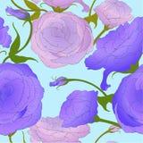 Configuration sans joint Retrait de vecteur Eustoma - fleurs et bourgeons Compositi décoratif illustration de vecteur