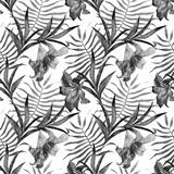 Configuration tropicale illustration stock