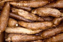 Configuration vegatable de nourriture de rhizomes de yucca de manioc Photos stock