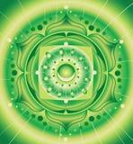 Configuration verte, mandala de chakra d'anahata Images stock