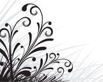Configurations de cru Images stock
