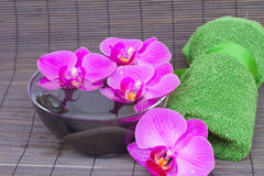 Configurations de station thermale avec des orchidées photo stock