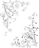 Configurations florales. Image libre de droits