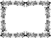 Confine in bianco in bianco e nero con gli elementi floreali Fotografie Stock
