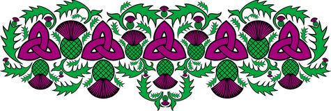 Confine celtico con i fiori del cardo selvatico Immagini Stock Libere da Diritti
