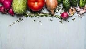 Confine con le erbe della cipolla del cetriolo del pomodoro dello zucchino del ravanello, verdure di autunno di concetto Fotografia Stock