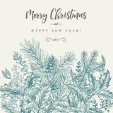 Confine con le piante di Natale Fotografia Stock