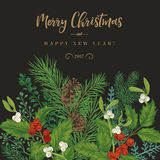 Confine con le piante di Natale Fotografia Stock Libera da Diritti