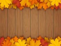 Confine dalle foglie di acero cadute su fondo di legno Immagini Stock