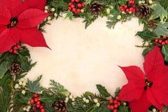 Confine del fiore della stella di Natale Fotografie Stock Libere da Diritti