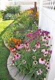 Confine del giardino con il fiore del bergamotto e dell'echinacea Fotografie Stock
