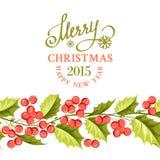 Confine del vischio di Natale Immagine Stock Libera da Diritti