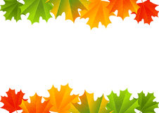 Confine dell'acero di autunno illustrazione di stock