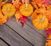 Confine della foglia e di Autumn Pumpkin Immagine Stock Libera da Diritti