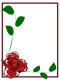Confine della rosa rossa Fotografie Stock Libere da Diritti
