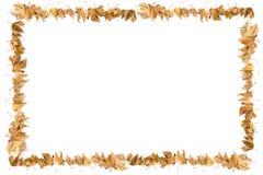 Confine delle foglie Immagine Stock Libera da Diritti