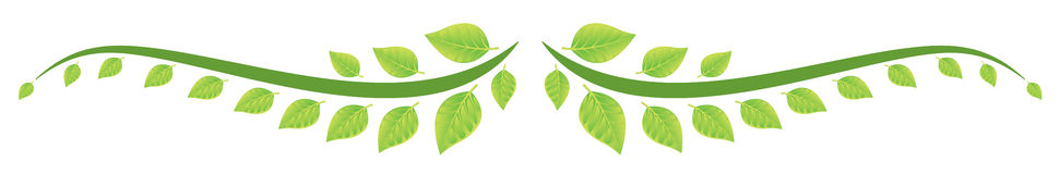 Confine delle foglie verdi Immagine Stock Libera da Diritti