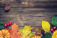 Confine di autunno con le foglie e le zucche cadute Fotografie Stock Libere da Diritti