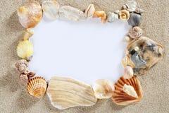 Confine el espacio de la copia del espacio en blanco del shell de la playa del verano del marco Foto de archivo