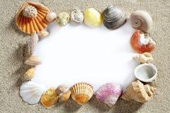 Confine el espacio de la copia del espacio en blanco del shell de la playa del verano del marco Fotografía de archivo