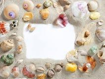 Confine el espacio de la copia del espacio en blanco del shell de la playa del verano del marco Imagenes de archivo