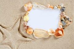 Confine el shell de la playa del verano del marco Foto de archivo libre de regalías