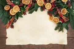 Confine festivo della frutta Immagine Stock